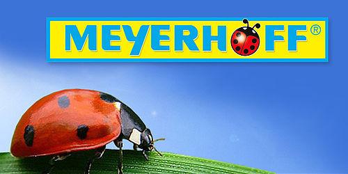 Meyerhoff Der Einkaufspark In Buschhausen Ist Eröffnet